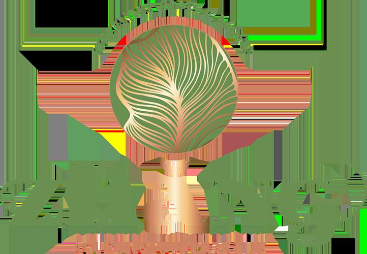 Acupunctuurpraktijk Zhăng Logo